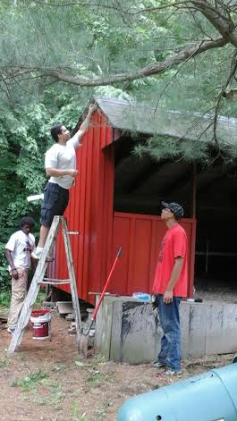 Painting White Pine Cabin