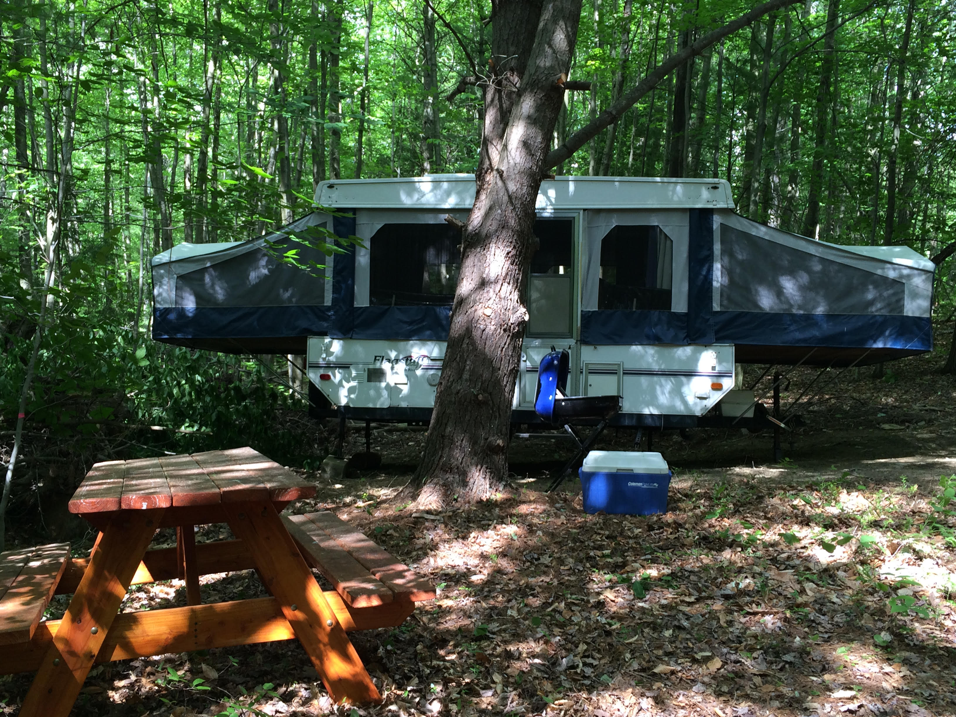 Planning a Memorable Camping Trip (The Director's Blog)