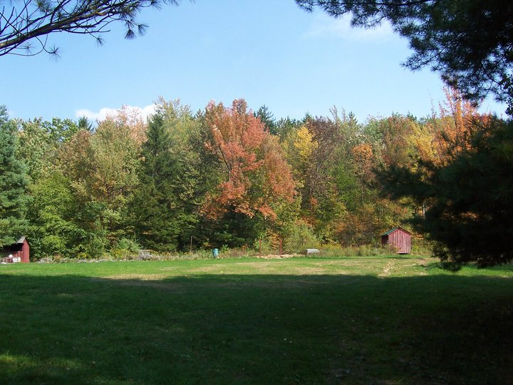 Fall Camping - A Beautiful Activity at Camp Earth Connection